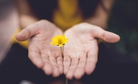 A woman holds a small yellow flower in her hands as an apology.