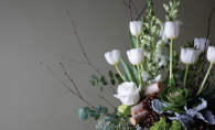 woodlane flowers in woodbury magazine