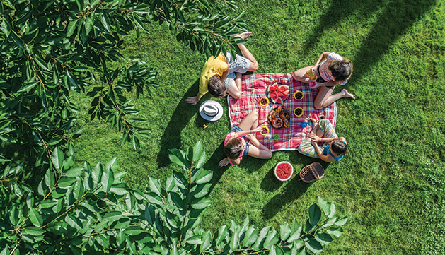 A family of four sits on a picnic blanket in the park.