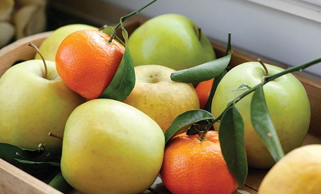 A variety of apples and citrus fruits, the main flavor profiles of verdicchio, vermentino and vernaccia wines.