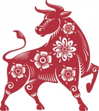 Illustration of ox for Chinese New Year