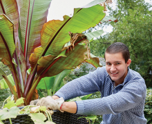Woodbury gardener Nick Plank tends to his tropical garden.